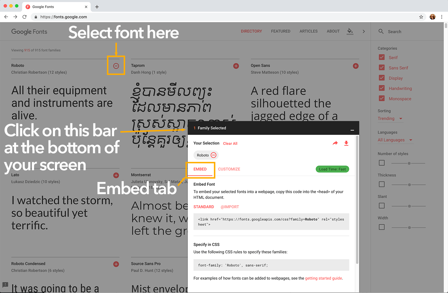 screen shot of Google fonts once a font is selected